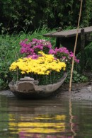 Flower Boat Canvas