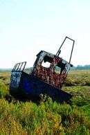 Tied to the Marsh Canvas Prints