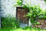 Logs and Door