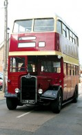 Guy-Bus