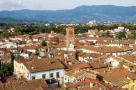 Lucca-Roofs
