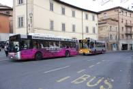 Senna-Bus