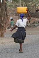 Water-Carrier